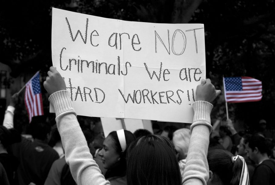 The Spotlight : 'Are They Stealing Our Jobs?' and More FAQ ...