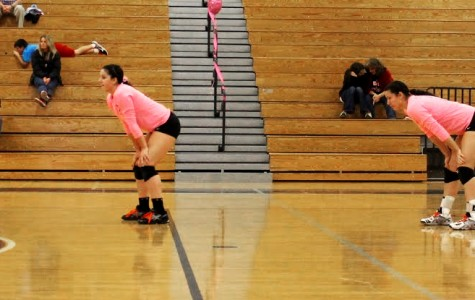 Lady Spartans Raise Money for Breast Cancer Research