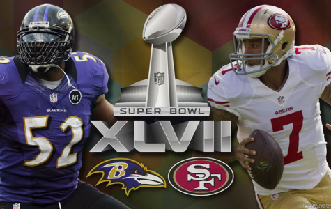 The Baltimore Ravens and the San Francisco 49ers battled it out at New Orleans in Super Bowl XLVII.