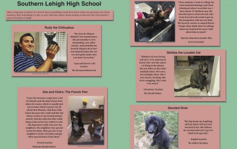 Meet the Real Teachers Pets of Southern Lehigh High School