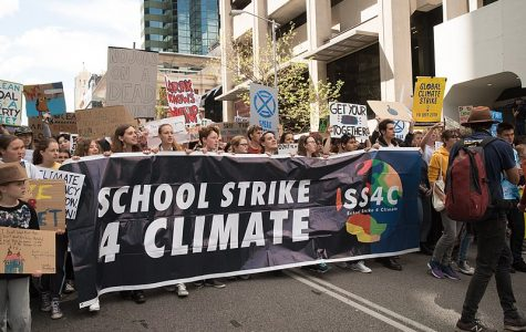 Various youth led groups within the United States and throughout the rest of the world have grown in prominence as calls for action on climate change intensify.