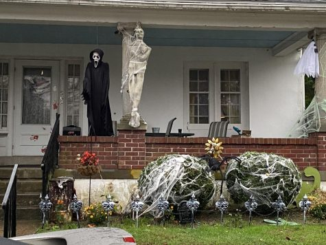 Despite the cancelation of many Halloween celebrations, many people still expressed their holiday spirit through spooky decorations.